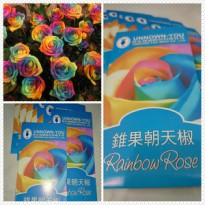 RAINBOW ROSE SEED - BENIH / BIBIT MAWAR RAINBOW
