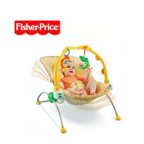 Fisher-Price Rocking Baby Bouncer