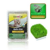 Obat Hairball Alami Anak Kucing Rumput Hidro - Grim Cat Hydro Grass For Kitten / Adult