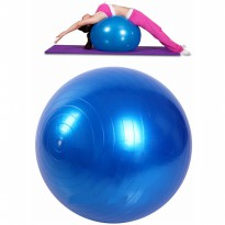 IBS Bola Yoga GymBall Fitness Pilates Senam Balance exercise Ball 65CM