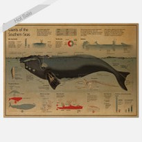 [globalbuy] Free ship Graphic whale science Paint Vintage Kraft Poster retro bar cafe livi/3265210