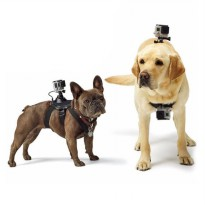 GoPro Action Camera Fetch Dog Harness Strap for GOPRO, BRICA B-PRO & Xiaomi Yi Camera