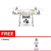 DJI Phantom 3 Professional free 2 Battery