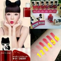 [BEST SELLER] PERIPERA PERI'S LIP TINT PRETY INK