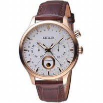 Citizen AP1052-00A Eco-Drive
