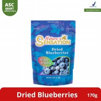 Nature Sensation Dried Blueberries