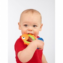 Mainan bayi / Sassy Teether Teething Tail Fish