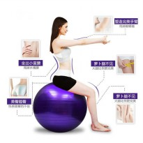 GYM BALL BOLA YOGA BOLA FITNESS 65 CM GRATIS POMPA GOOD QUALITY