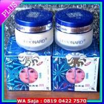 DEOONARD 25GR A DAN B SEPAKET ( DAY AND NIGHT )
