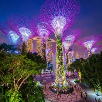 Tiket GARDENS BY THE BAY SINGAPORE Child