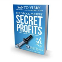 Buku The Stock Market Secret Profits. Santo Vibby .BEST SELLER TRADERS