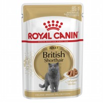Royal Canin Adult British Shorthair Pouch 85gr