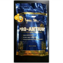 NEW STOCK - PRO ANTIUM 1 Lbs Chocolate Cookie 528gram Ronnie Coleman