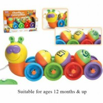 Funtime charlie the Caterpillar plus bubble