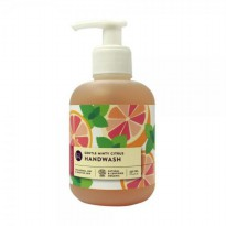 Buds Gently Minty Citrus Hand Wash 250ml