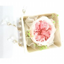 Box A Single David Austin White Pink Rose Beauty Preserved Flower