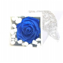 Box A Single Dark Blue Rose Preserved Flower Represent Unattainable