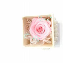 Box A Single Pink Rose Preserved Flower Represent Love & Gratitude