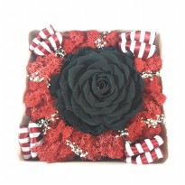 Bloom Box Big Black Rose Beauty Preserved Flower