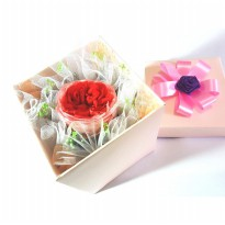 Bloom Box David Austin Rose Beauty Multicolor Preserved Flower