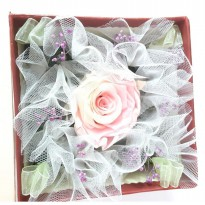 Bloom Box Pink Rose Beauty Multicolor Preserved Flower