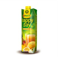 Happy Day Multivitamin Fruit Juice 1 L
