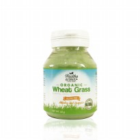 Organic Wheat Grass Powder (45 gr) - Healthy Corner