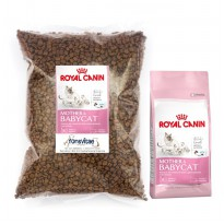 Catfood Royal Canin Mother & Babycat Repack 1kg