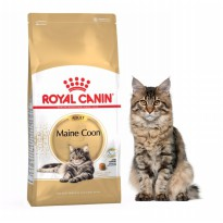 Catfood Royal Canin Maine Coon Adult 2kg