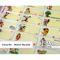 Disney Sticker MEDIUM Name Label