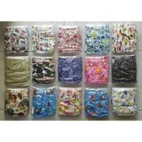 CLODY (CLOTH DIAPERS) ISI 2 INSERT