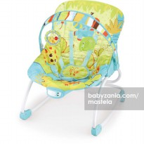 Mastela Newborn to Toddler Rocker - Green