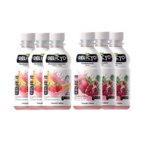 Delicyo Yogurt Drink Mix (6 botol)