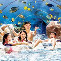 Adventure Cove Waterpark - Adult