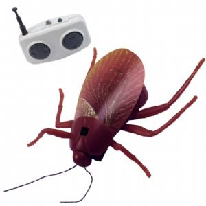 RC Toys - Remote Controlled Cockroach