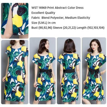 Print Abstract Color Dress (Size S,M,L)-14969