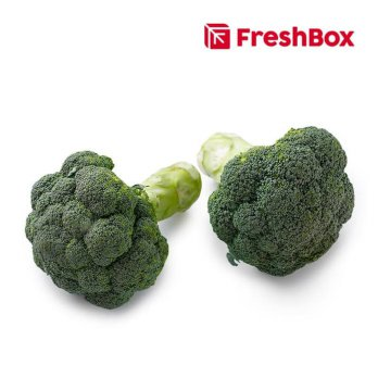 FreshBox Brokoli 500 gr