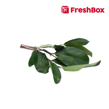 FreshBox Daun Salam 100 gr