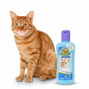 Cat See Shampoo Kutu 120ml