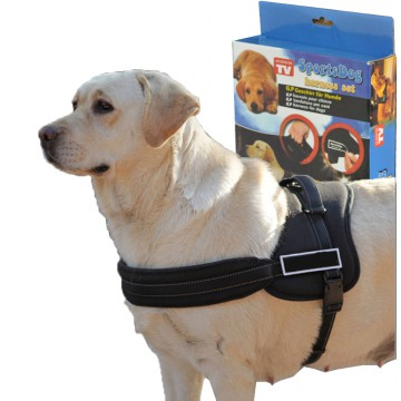 Baju Anjing Peliharaan - Sports Dog Harness Set