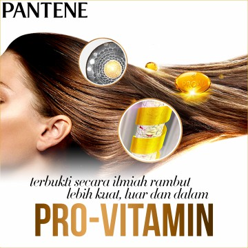 Pantene Sampo Anti Dandruff 750ml - Paket Isi 2